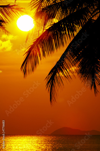 Motiv-Rollo Basic - sunset