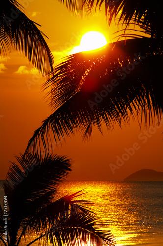 Motiv-Rollo Basic - tropic sunset (von Dmitry Ersler)