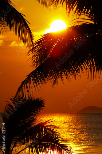 Foto-Leinwand - tropic sunset