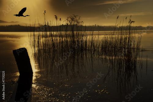 Photo volo al tramonto