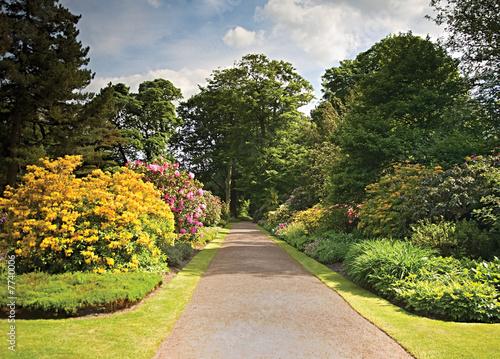 Fotografija Garden Path