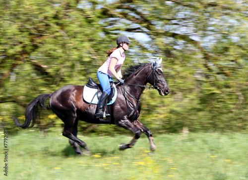 Deurstickers Paardensport Speed