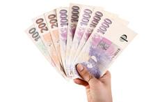 Hand With Czech Money