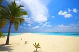 Nieskończona tropikalna plaża