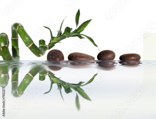Reflets zen