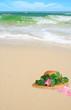 Pretty Bonnet on Beach