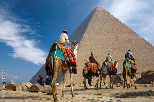 Poster Egypte bedouin on camel near of egypt pyramid