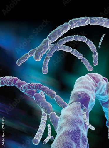 Anthrax virus Canvas Print