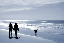 Two Women Walking At The Beach In The Winter With A Dog.