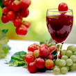 Leinwanddruck Bild Grape to Wine