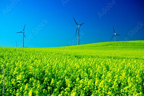 Fotografia  Wind turbines.