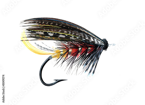 Printed kitchen splashbacks Fishing Assassin