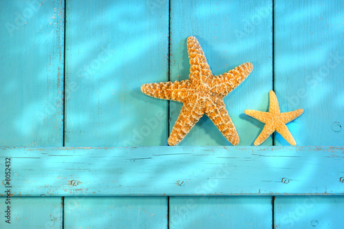 Starfish on an old rustic door