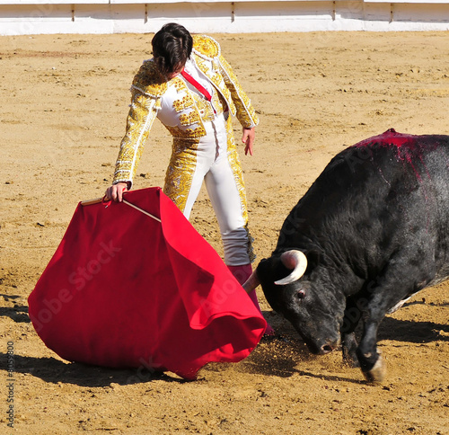 Wall Murals Bullfighting Matador & Bull