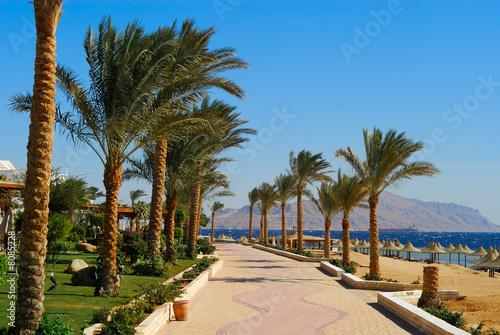 Tuinposter Egypte sharm el sheikh