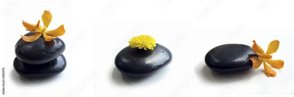 Leinwandbild Motiv - Delphotostock : Galet noir et orchidée