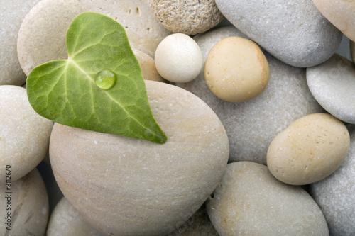 Doppelrollo mit Motiv - heart leaf pebbles background (von Noam)