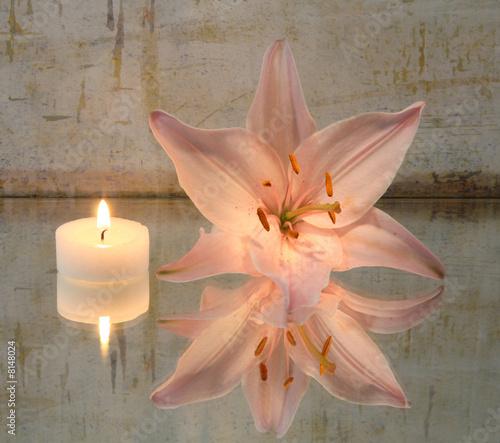 Doppelrollo mit Motiv - Lilie und Kerze