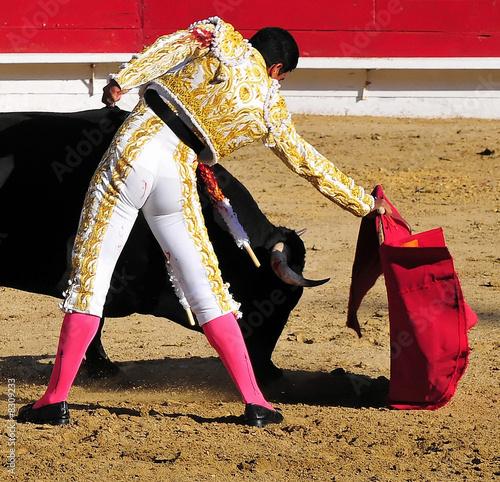 Poster Bullfighting Matador Leading Bull
