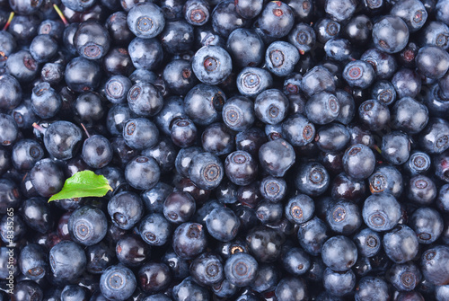Photo sweet bilberries as a background