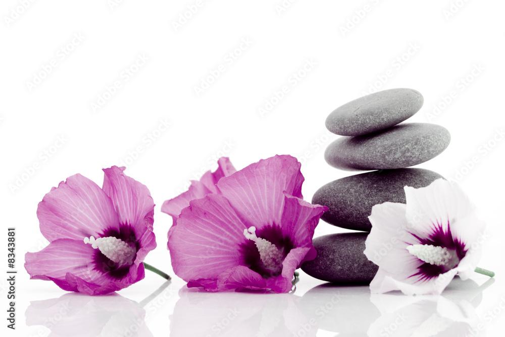 Doppelrollo mit Motiv - pebble with ibiscus flower