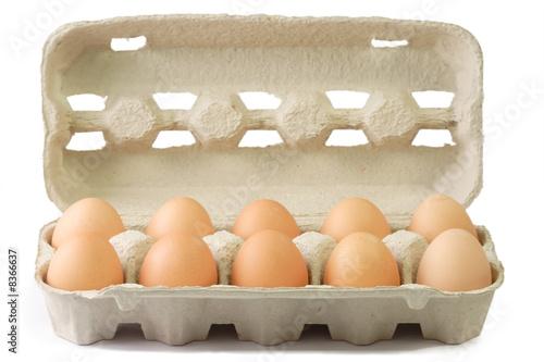 canvas print motiv - H. Brauer : Braune Eier im Pappkarton