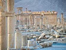 Sunset In Palmyra
