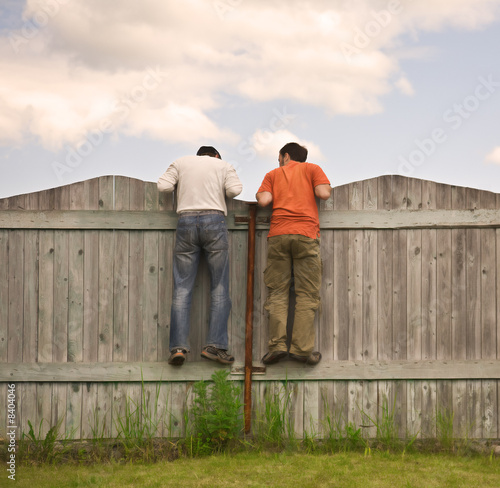Láminas  Two boys on the fence looking for smth