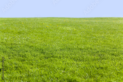 Foto auf Gartenposter Hugel Green field and blue sky