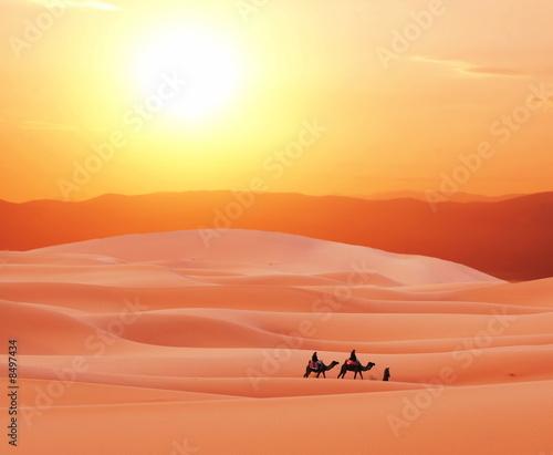 Poster Corail Sahara desert