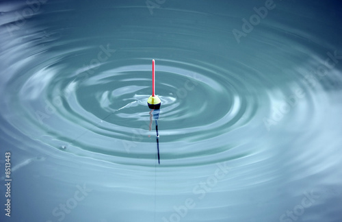 Fotografie, Obraz  bobber signals in the waves