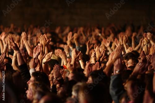 Fotomural foule fan spectateur concert musique main bras applaudir