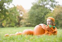Baby Boy Outdoors In Pumpkin C...