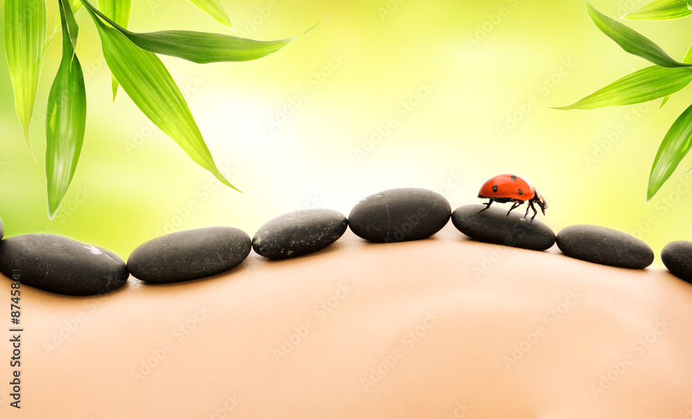 Doppelrollo mit Motiv - Massage with hot stones