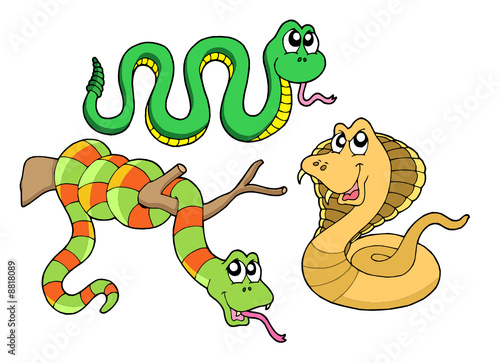 Poster Creatures Cute snakes collection