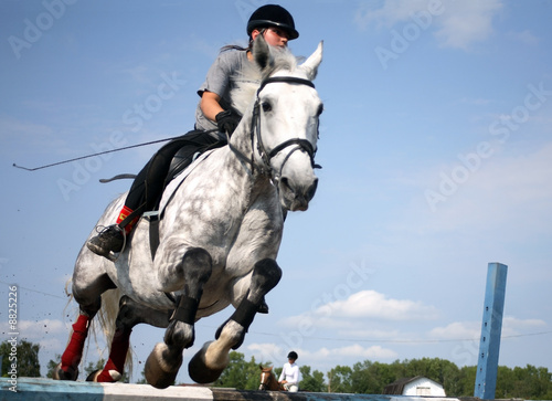 Acrylic Prints Horseback riding Victorious jerk