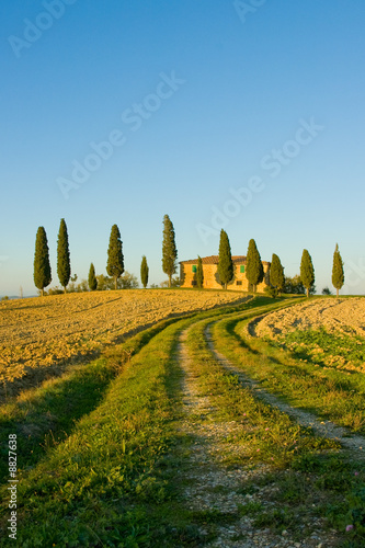 Deurstickers Toscane image of typical tuscan landscape