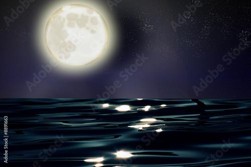 Fototapeta luna obraz na płótnie