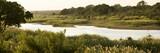 Fototapeta Sawanna - African landscape at the morning