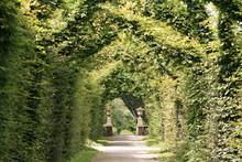 Passage De Verdure (jardin à La Française)