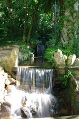 Chute d'eau dans un jardin tropical, Rio, Brésil.