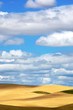 canvas print picture - Wheat fields and Pretty sky