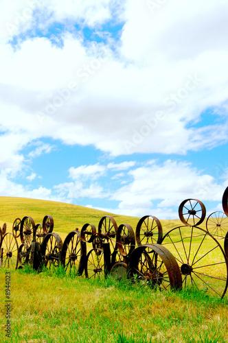 canvas print motiv - JEANNE : Vertical landscape of wheat fields