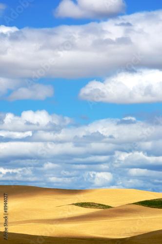 canvas print motiv - JEANNE : Wheat fields and Pretty sky
