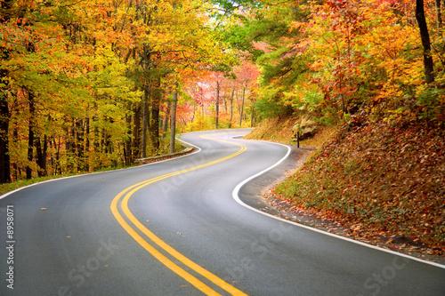 Fényképezés Winding road