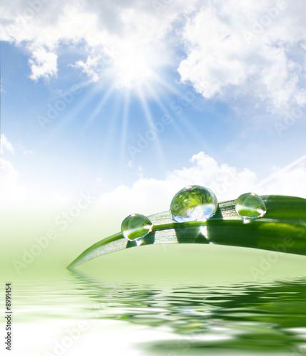 Akustikstoff - fresh green grass