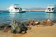 Ships in the bay near desert.