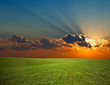 canvas print picture An image of sunrise and green field