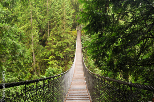 Deurstickers Brug lynn valley suspension bridge