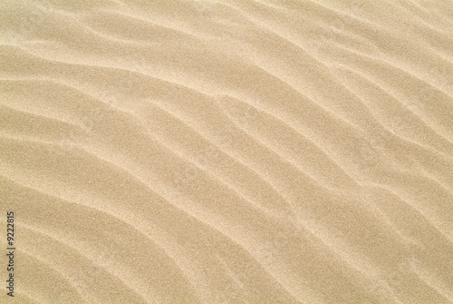 Doppelrollo mit Motiv - ripples in the sand (von dkimages)